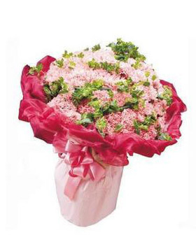 33 pink carnations  - flowers to China