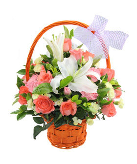 Warm Greetings - Send flower to China