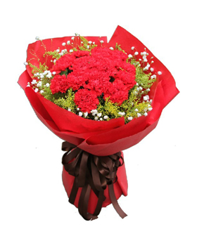 Deep Gratitude: 24 Pink carnations, China flowers delivery,Send flower to China
