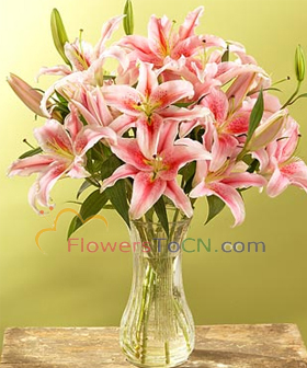 6 Pink Lily - flowers to China