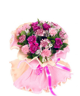 19 carnations - China flowers